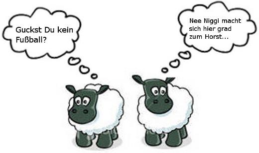 Dumme Schafe